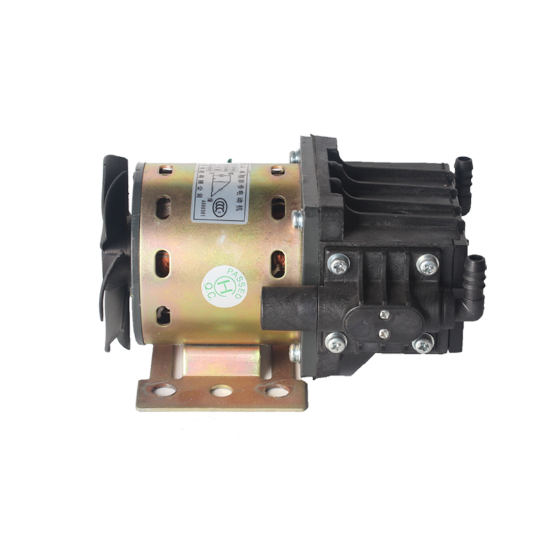 YY80-32-4 Vaccum Pump of 220V and 110V